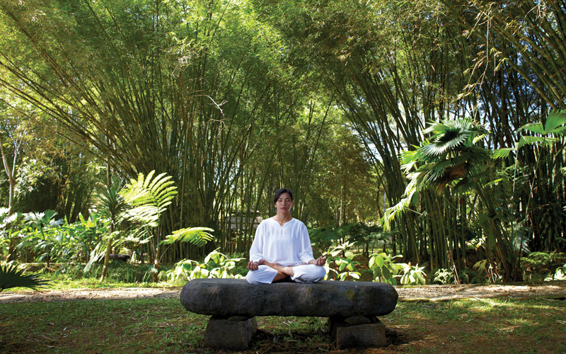 MesaStila Yoga Meditation Destination Deluxe