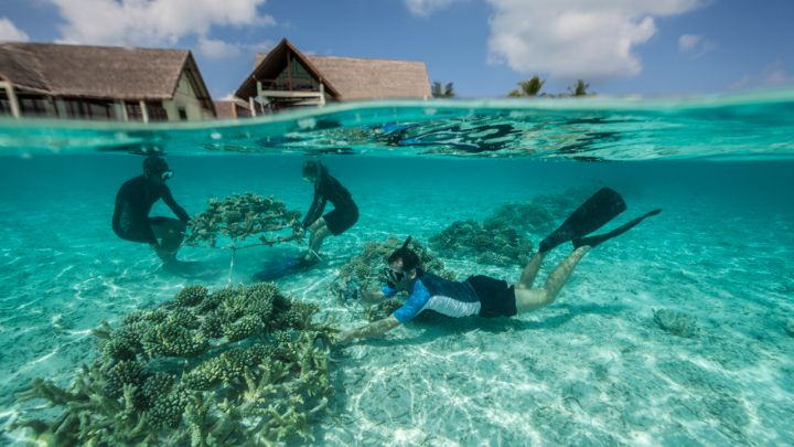snorkeling-maldives-destination-deluxe