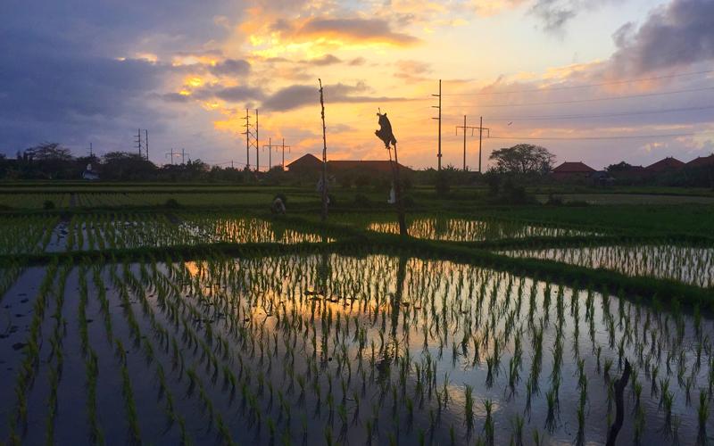 Sunrise Bali The Samata Sanur - Destination Deluxe