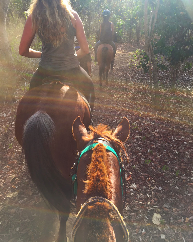 The Menjangan Horse Riding - Destination Deluxe
