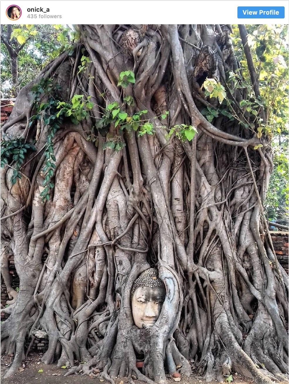 Instagram Spots Ayutthaya Buddha Head - Destination Deluxe