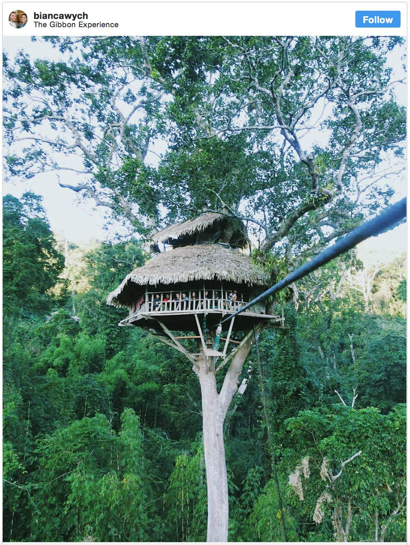 Wandersnap The Gibbon Experience Laos - Destination Deluxe