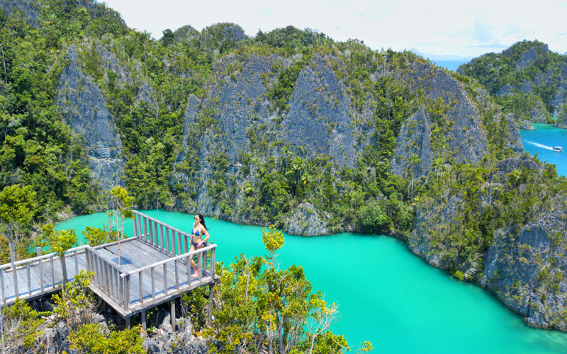 Sequoia Coral Triangle Safaris Pianemo Secret Lookout Raja Ampat - Destination Deluxe