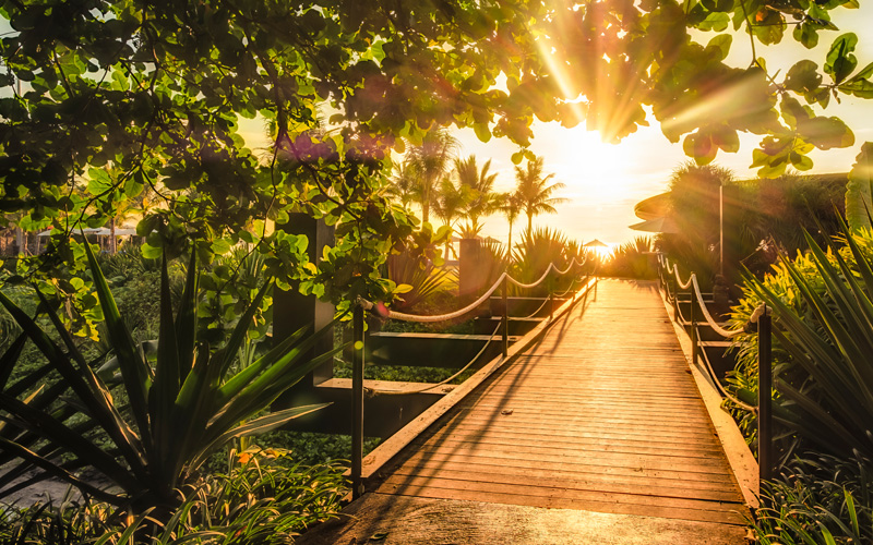 Komune Bali Sunshine - Destination Deluxe