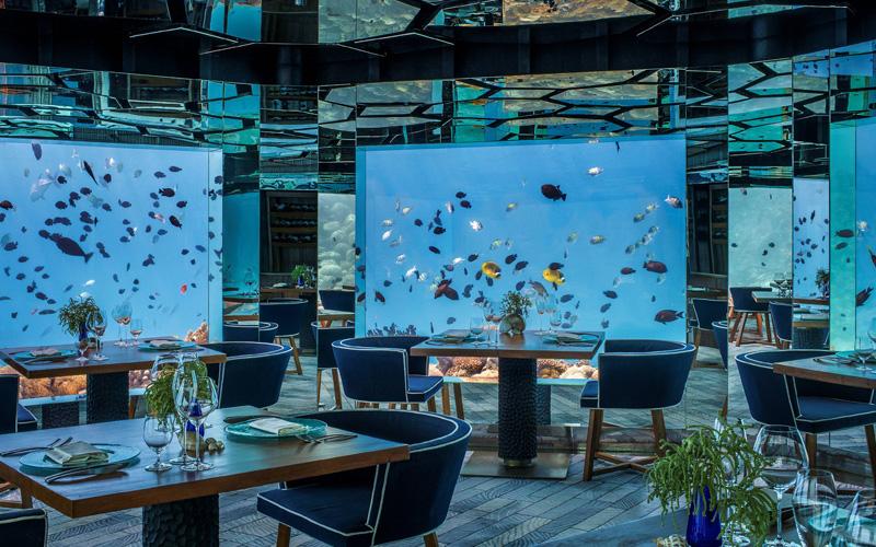 Anantara Kihavah Maldives Underwater Restaurant - Destination Deluxe