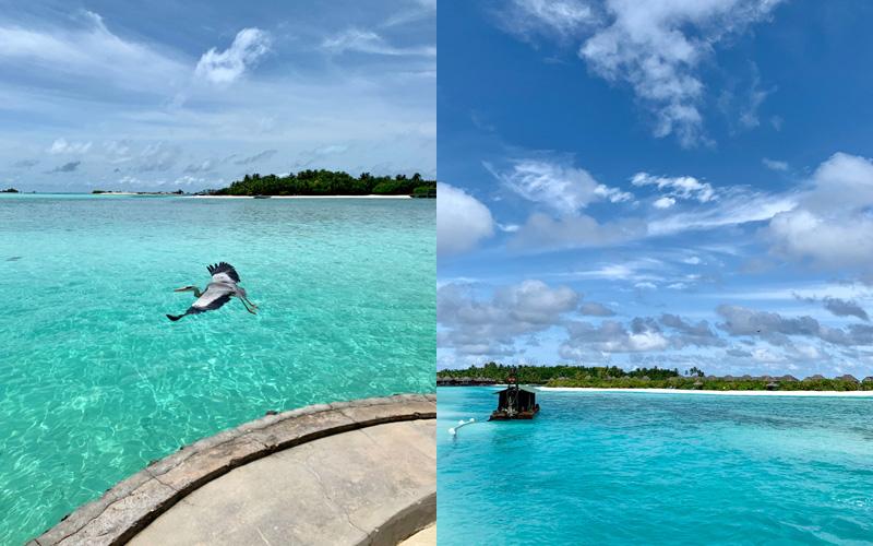 Luxury Wellness Retreats Anantara Veli Maldives - Destination Deluxe