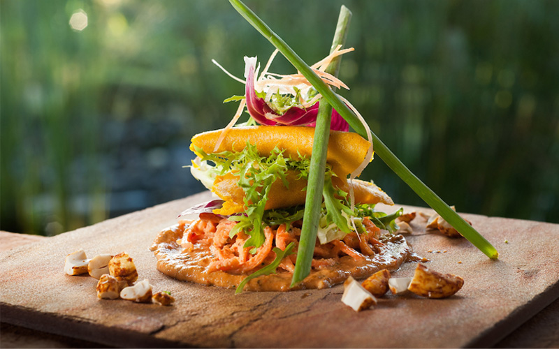 Wellness Plant-Based Cuisine - Destination Deluxe