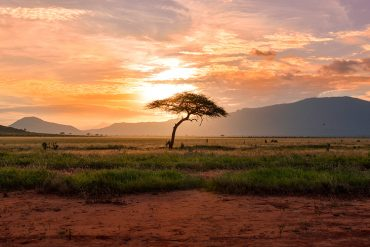 Africa Wellness Retreats - Destination Deluxe