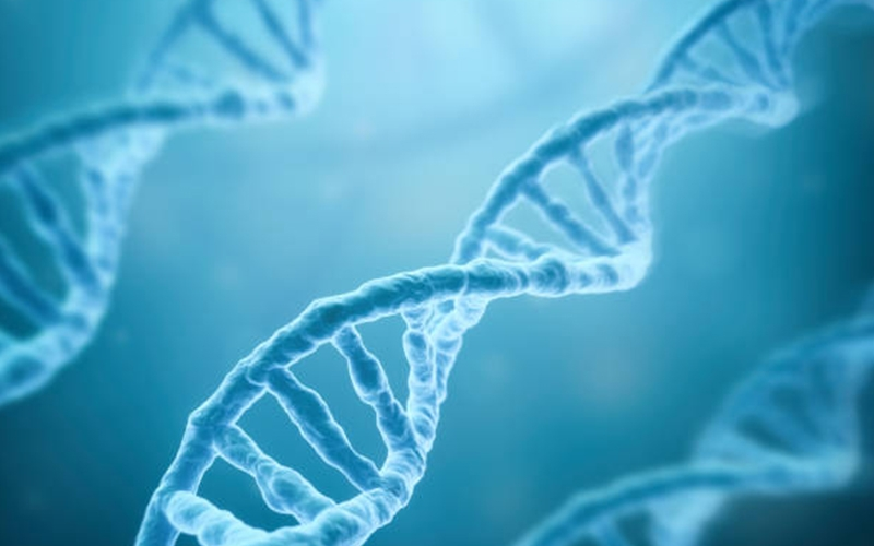 DNA Testing Nutrigenomics - Destination Deluxe