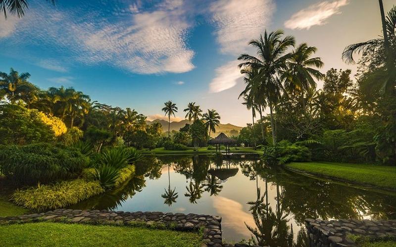 The Farm Wellness Retreat Philippines - Destination Deluxe