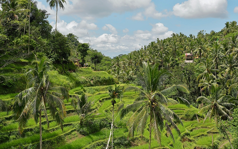 Best Wellness Retreats in Balim Indonesia - Destination Deluxe