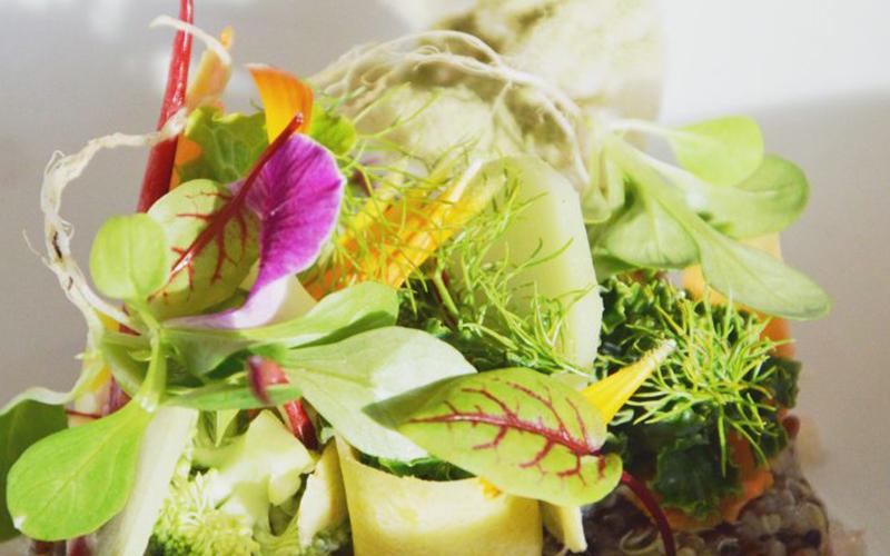 JK7 Sullivan Estate Wellness Cuisine - Destination Deluxe