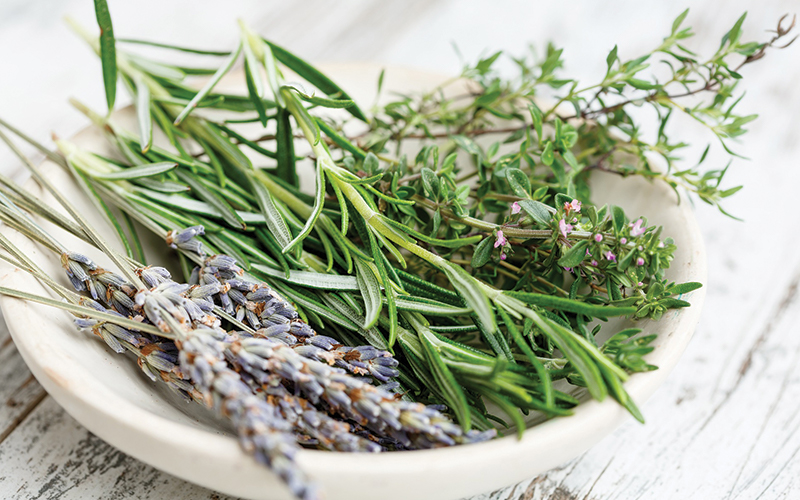 Benefits of Herbs - Destination Deluxe