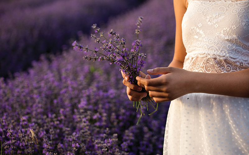 Herbs Spiritualituy - Destination Deluxe