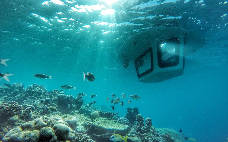 Amilla Maldives Penguin Boat - Destination Deluxe