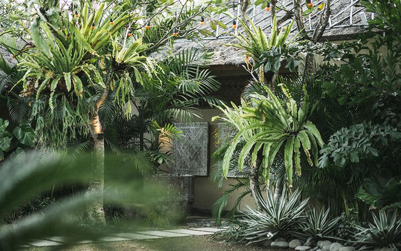 The Place Retreats in Bali - Destination Deluxe