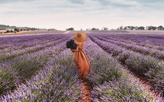 Spa L'OCCITANE Fields of Provence - Destination Deluxe