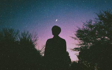 Dream Interpretation Analysis - Destination Deluxe